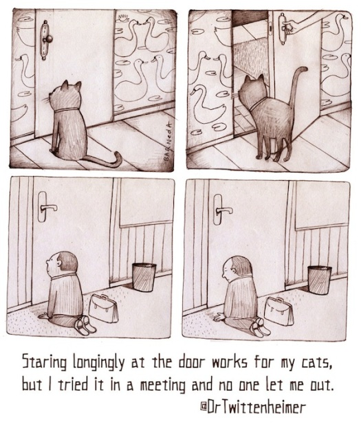 Staring longingly at the door works for my cats, but I tried it in a meeting and no one let me out. - @DrTwittenheimer